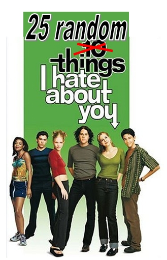 [25 random things I hate about you movie poster]