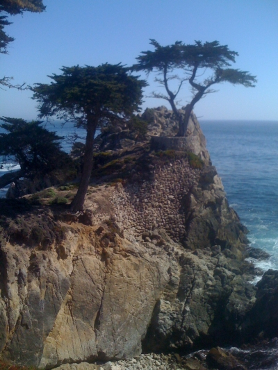 The Lone Cypress, a trademarked image being used here for non-commercial purposes, Friday, May 16, Pebble Beach, CA