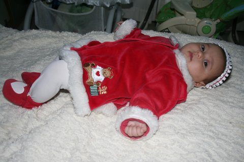 Sophie, almost 3 months old, dressed for Christmas, December 18, 2007, Mountain View, CA; photo by Kimi Mack