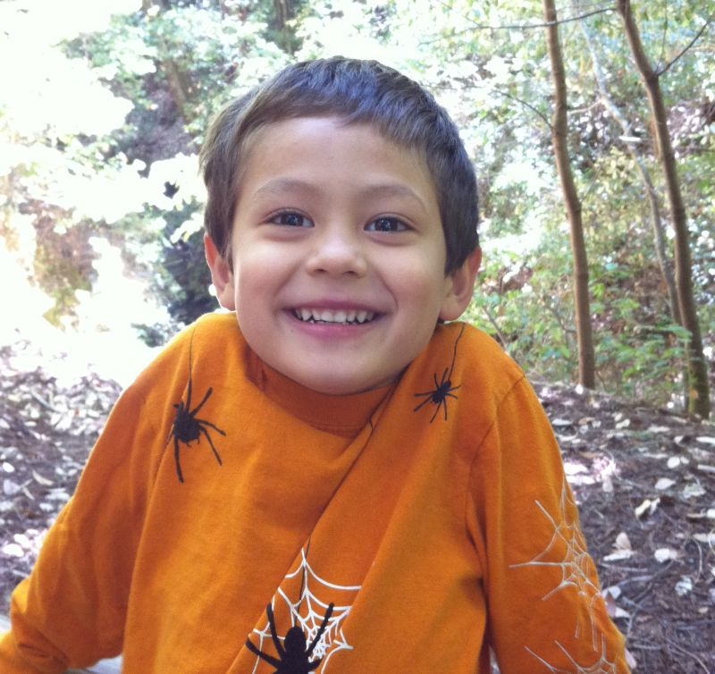 Sammy in 2010, at Big Basin Redwoods State Park