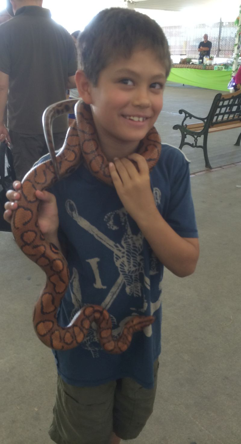 Sammy in 2014, at the Santa Clara County Fair with a snake around his neck